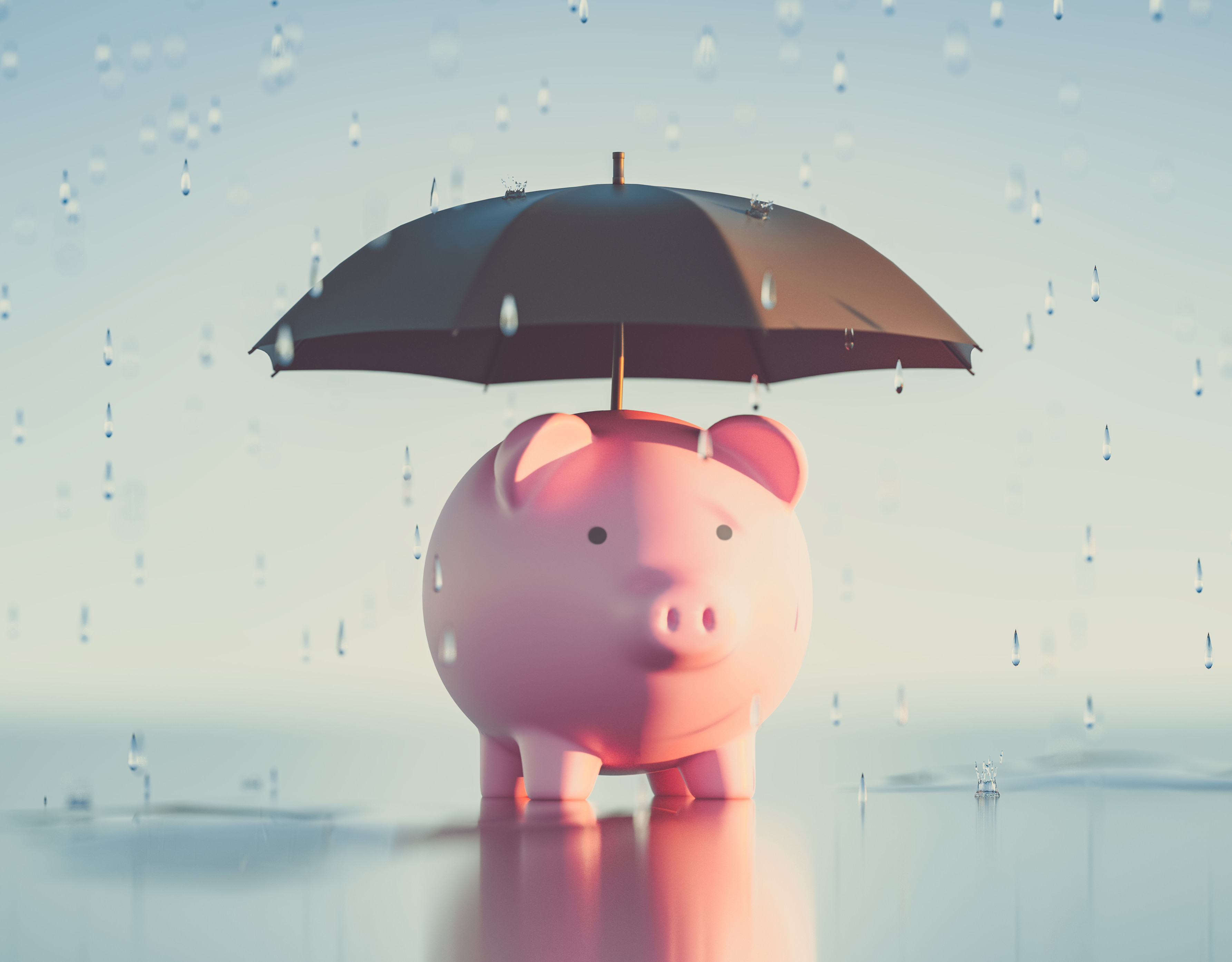 Piggy bank with an umbrella over its head   First Alliance Credit Union