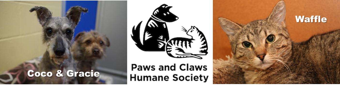 Paws and Claws Image