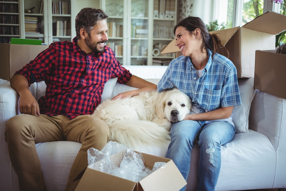 questions to ask when choosing a home equity loan | things to consider before getting a home equity loan | home equity loan | First Alliance Credit Union MN