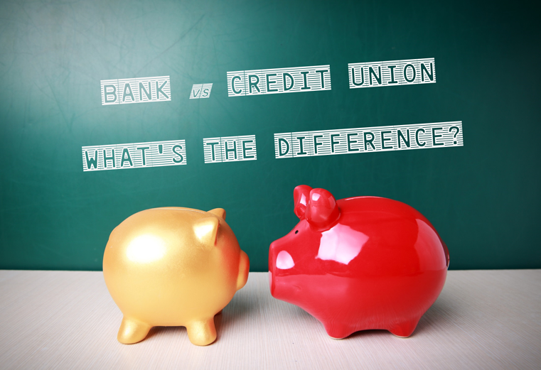 bank vs credit union | bank vs credit union | what is the difference between banks and credit unions | are credit unions different from banks | major differences of banks and credit unions | what are credit unions | first alliance credit union mn