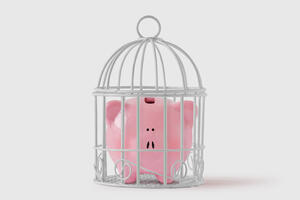 Piggy bank in a birdcage | First Alliance Credit Union